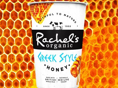 RACHELS ORG GREEK YOGHURT WITH HONEY 450 G