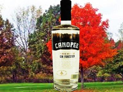 CANOPÉE - PREMIUM GIN FORESTIER - 750ML